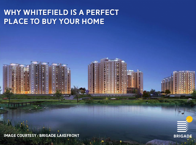 Why Whitefield is the Perfect Place to Buy Your Home