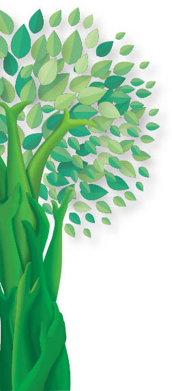 Green Bengaluru Initiatives