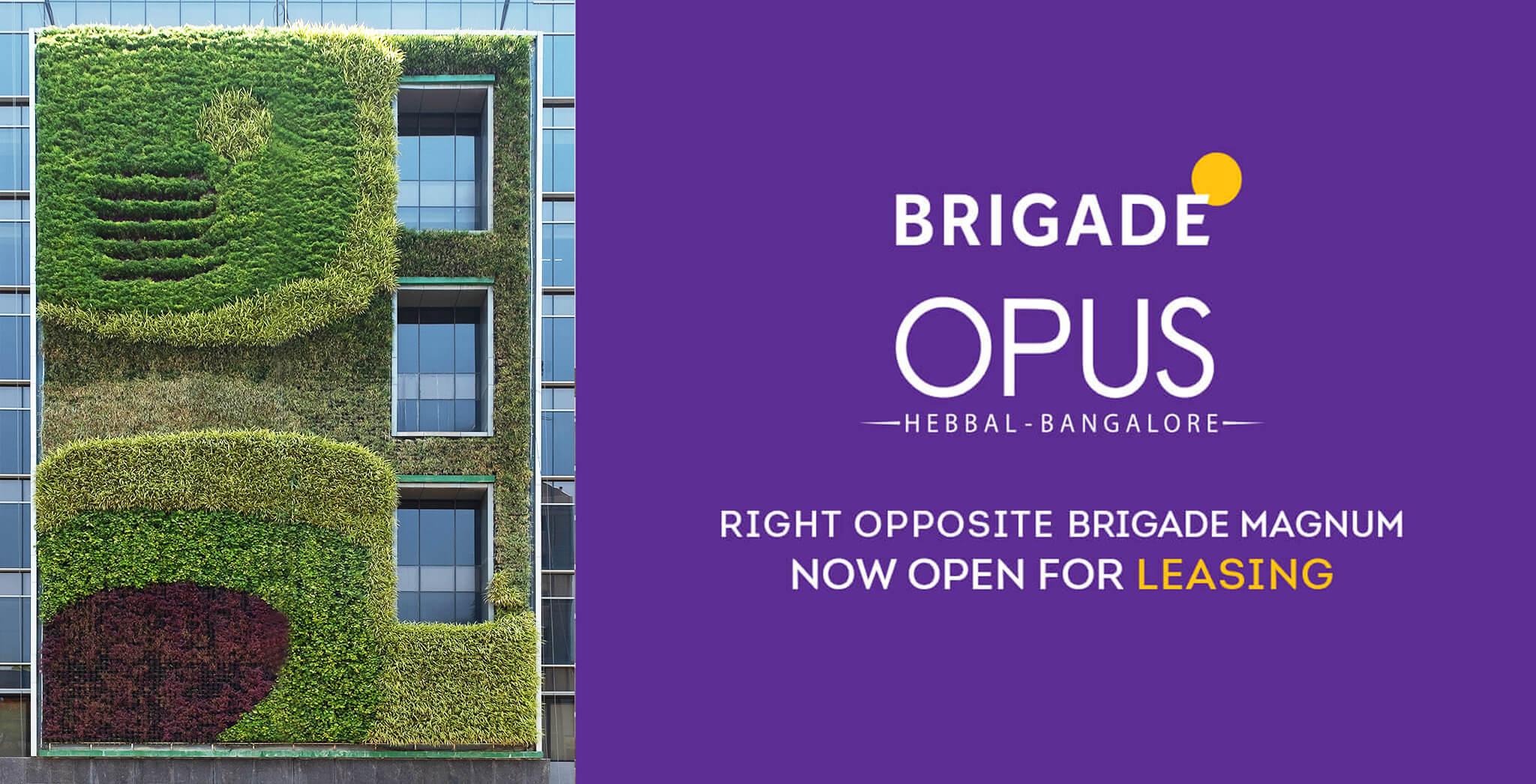 Brigade Opus gallery image