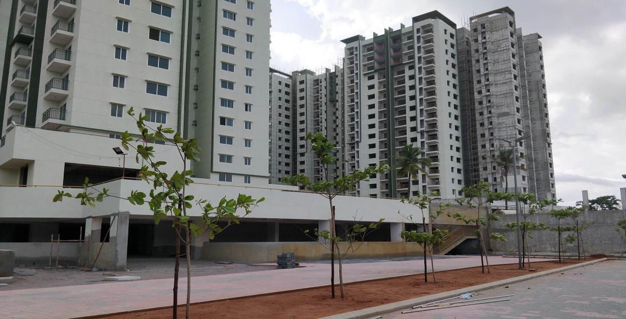Jun 2018 - Tower D and Visitor car park area plantation