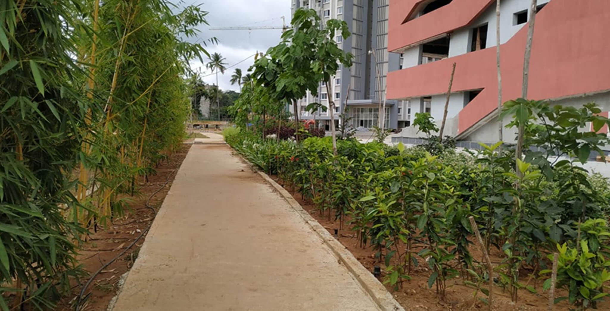 Jul 2020 - Entrance Landscaping in progress