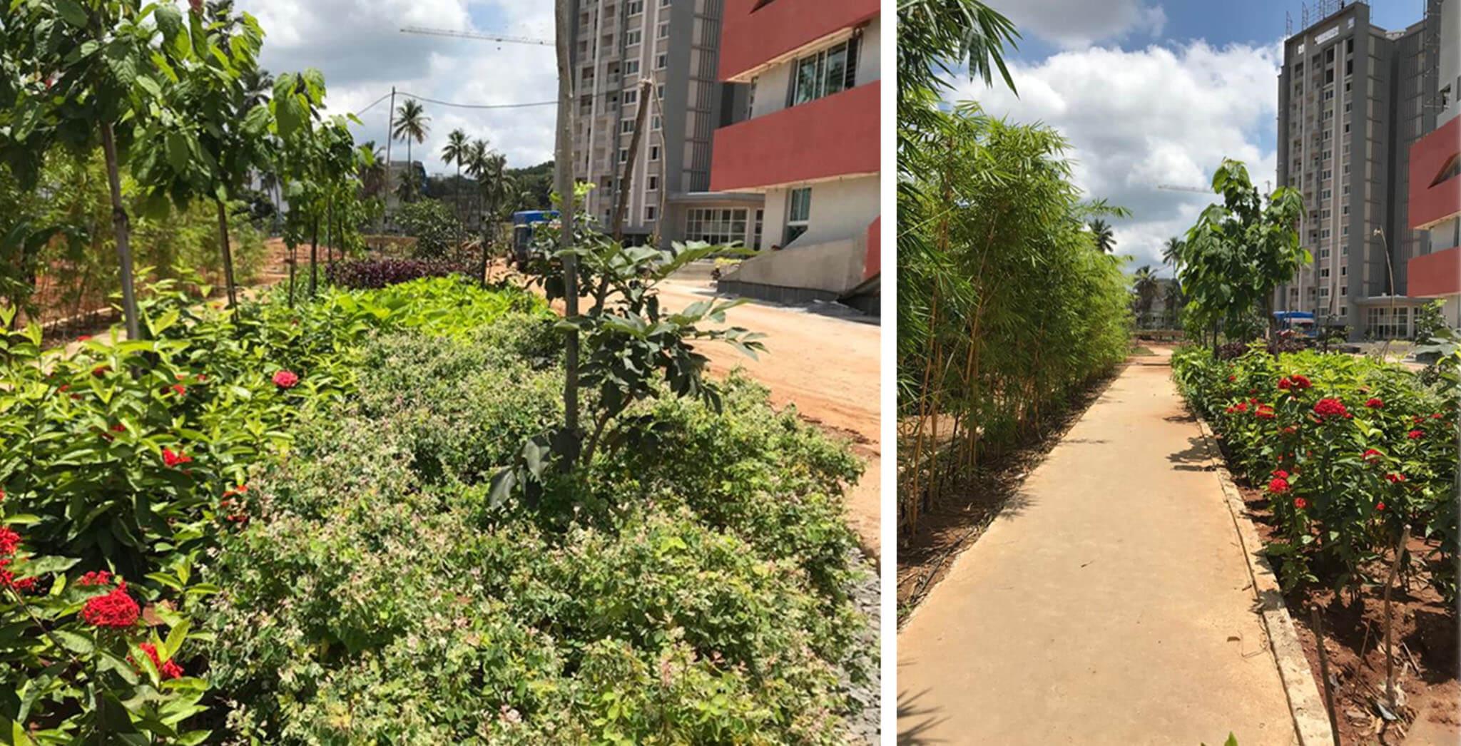 Oct 2020 - Entrance landscaping in progress